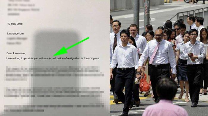 Pria Resign dari Kerjaan Bergaji Besar di Singapura, Pilih Pulang Kampung, Surat Resign-nya Viral