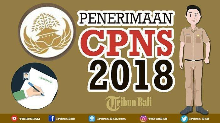 Update Terbaru BKN, Sebanyak 546 Instansi Siap Rilis Hasil SKD dan Peserta SKB CPNS 2018