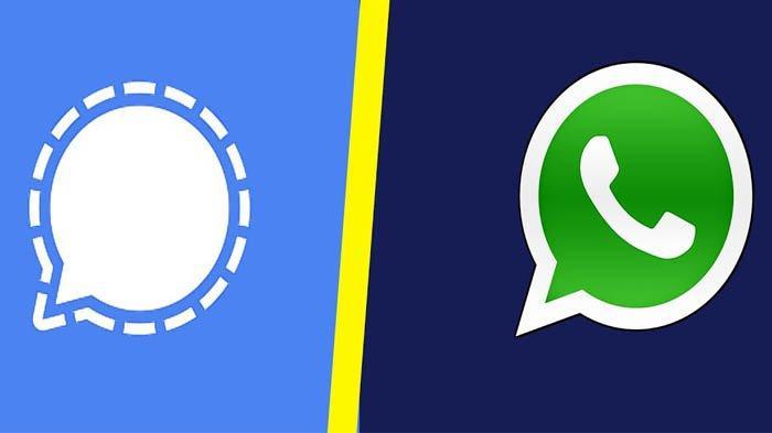 Buntut Kebijakan Baru WhatsApp, Pengguna Signal Malah Semakin Meningkat, Simak Perbedaanya