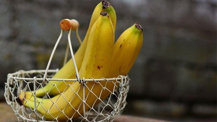 Cara menyompan pisang agar tidak cepat busuk.