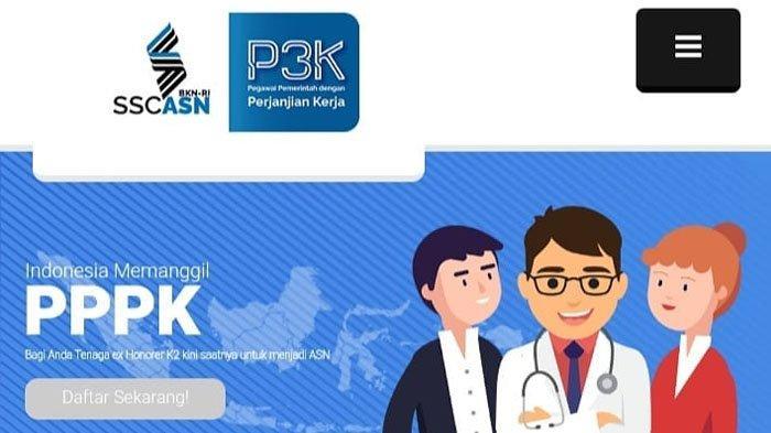 Link Resmi Pendaftaran PPPK 2019 Via Sscasn.bkn.go.id, Daftar di Hari Minggu 10 Februari 2019