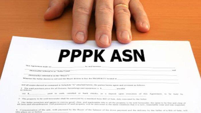 PPPK 2019 - Panduan Lengkap Pendaftaran di sscasn.bkn.go.id, dari Jadwal Hingga Syarat!