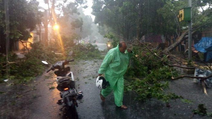 Puting Beliung Terjang Wilayah Bogor Selatan, Genteng Rumah Warga Berterbangan, Ini Videonya