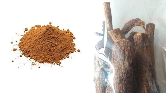 Apa Itu Qhusthul Hindi? Herbal Asal India yang Konon Bisa Sembuhkan Pasien Covid-19, Benarkah?
