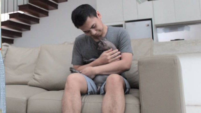 Cerita Haru Kucing Raditya Dika Yang Dipungut Karena Pincang Tribunstyle Com