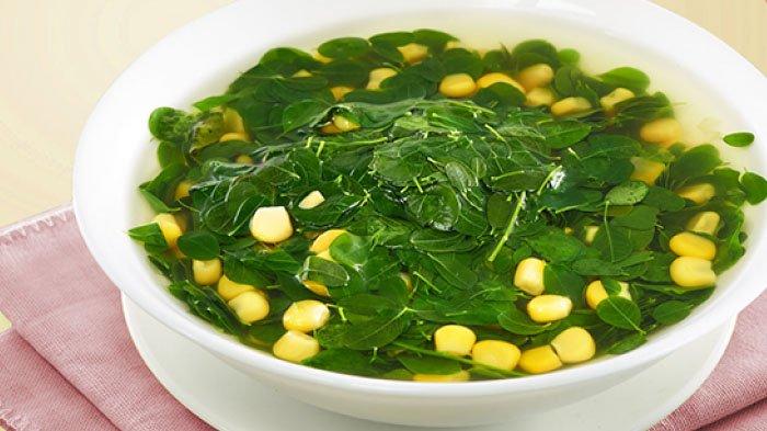 Hasil gambar untuk sayur daun kelor