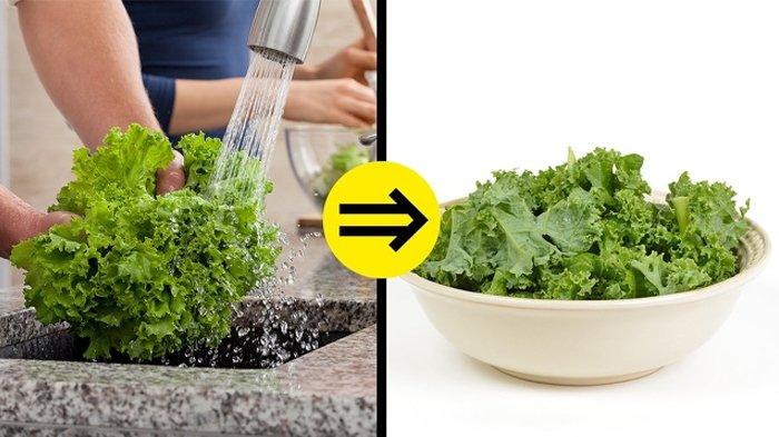 7 Makanan yang Dianggap Sehat Ini Ternyata Bisa 'Menghancurkan' Tubuhmu, dari Selada hingga Telur