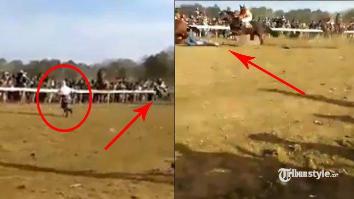 Detik-detik Seorang Ibu Tertabrak Kuda Usai Nekat Lintasai Jalur Pacuan Kuda di Kebumen, Nahas!