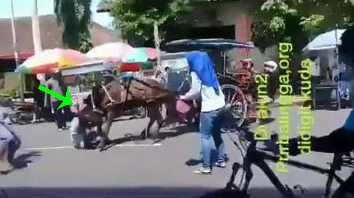 Warga Menjerit-jerit dan Panik Ketika Mengetahui Seseorang Sedang Digigit Kuda