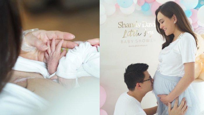 Selamat! Shandy Aulia Melahirkan Anak Pertama, Banjir Ucapan dari Melly Goeslaw hingga Luna Maya