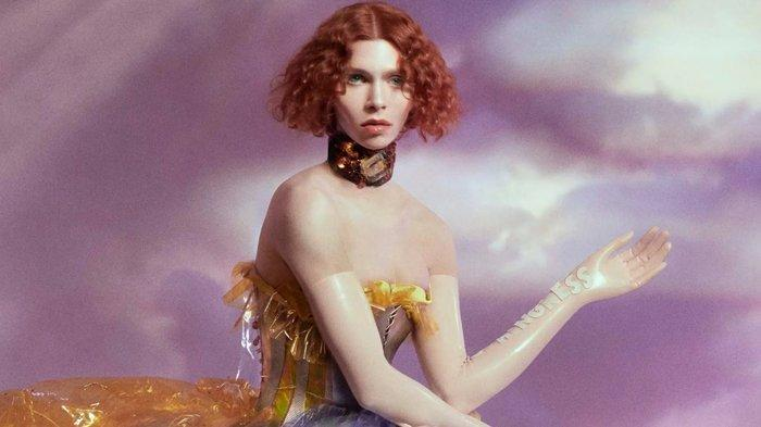 Sophie, digambarkan di sampul album Oil of Every Pearl's Un-Insides.