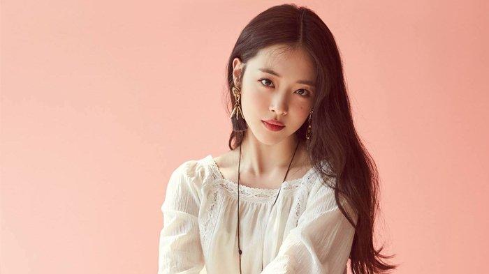 Profil Sulli Mantan Member f(x), Idol Kpop yang Bunuh Diri Karena Depresi Dirundung Warganet