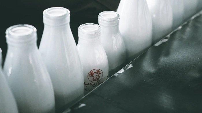 5 Cara Menyimpan Susu Cair dalam Kulkas yang Benar, Agar Bertahan Lebih Lama