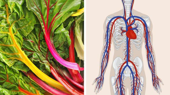 10 Makanan Mengandung Alkaline yang Menurunkan Berat Badan dengan Meluruhkan Lemak Berlebih