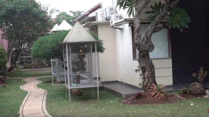 Taman belakang  rumah Narji yang asri