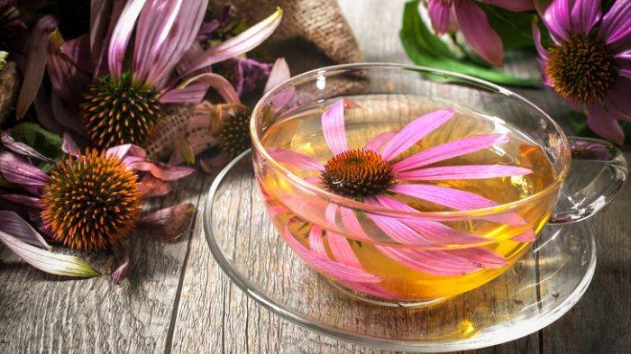 Tak Cuma Cantik, 10 Teh Herbal Ini Baik dan Menyehatkan untuk Tubuh