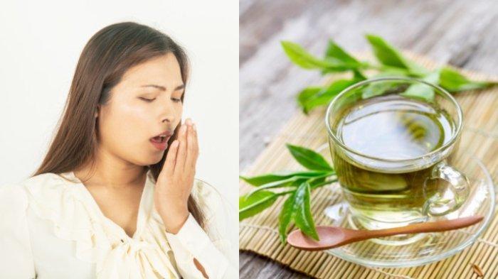 Bau Mulut Setelah Santap Daging Kurban, Ini 5 Cara Ampuh Mengusirnya, Pakai Mentimun & Teh Hijau