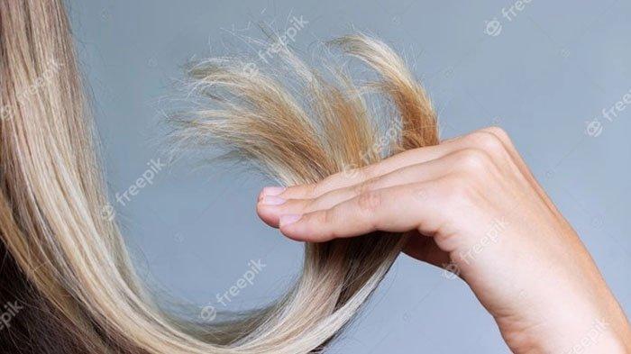 Tips Bleaching Rambut agar Tak Kering dan Rusak, Perhatikan 5 Hal Penting Ini, Apa Saja?