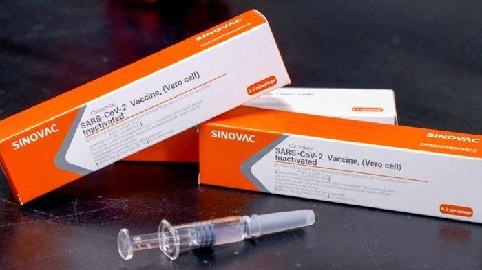 Resmi, Vaksin Covid-19 Sinovac Sudah Diizinkan BPOM untuk Penggunaan Darurat, Dinyatakan Aman