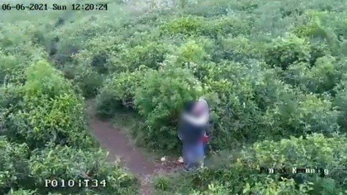 Buntut Video Viral Dua Sejoli Bercumbu di Tengah Kebun Teh Kemuning, Polisi Buru Pelaku