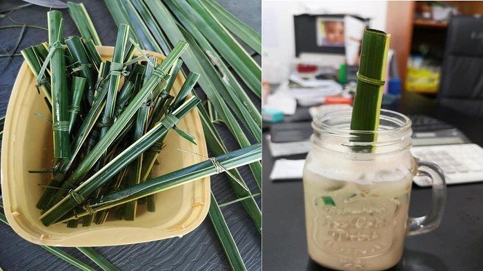 viral-sedotan-terbuat-dari-daun-kelapa-palem-alternatif-sedotan-plastik-ini-jadi-sorotan-warganet.jpg