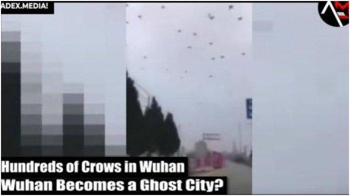 VIRAL VIDEO Ribuan Gagak Terbang di Langit Kota Wuhan, China di Tengah Kekhawatiran Virus Corona
