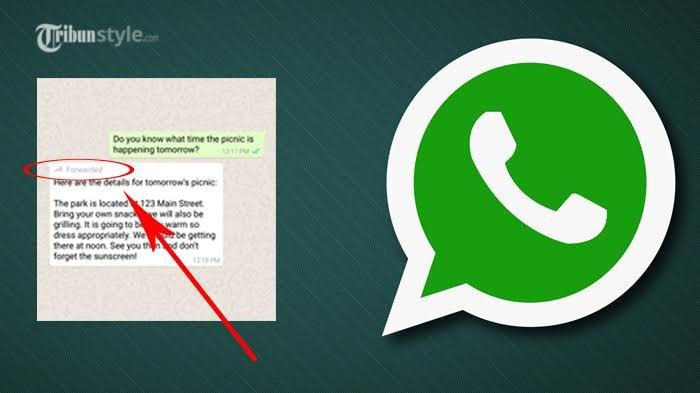Cara Mudah Lacak Pesan Pasangan yang Selingkuh via WhatsApp