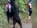 3-wanita-berusaha-diam-saat-beruang-hitam-mulai-mendekati-dan-mengendus-mereka.jpg