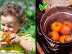 cara-makan-tomat-yang-benar.jpg