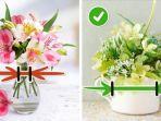 cara-merawat-bunga.jpg