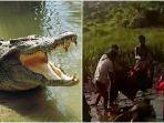 diterkam-lalu-bergulat-dengan-buaya-pria-di-sulawesi-barat-ini-ditemukan-tewas-mengapung-di-sungai.jpg
