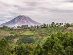 gunung-sinabung_20170103_162617.jpg