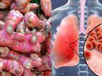 khasiat-jahe-merah-untuk-pencegahan-virus-corona.jpg