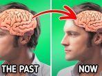 otak-menyusut.jpg