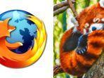 panda-merah.jpg