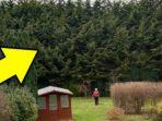 Putuskan Balas Dendam dengan Tanam Pohon, Tetangganya Baru Merasakan Akibatnya Setelah 20 Tahun