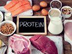 protein-unsplash.jpg