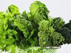 sayuran-hijau.jpg