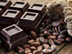 simak-5-manfaat-cokelat-bagi-kesehatan-dark-chocolate-juga-miliki-manfaat-yang-baik-bagi-tubuh.jpg