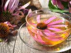 teh-herbal.jpg