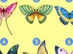 tes-kepribadian-pilih-gambar-kupu-kupu.jpg