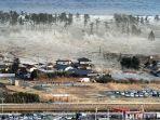 tsunami_20161207_114816.jpg
