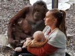 viral-video-sambil-berlinang-air-mata-ibu-ini-temui-orangutan-saat-menyusui-bayinya-ini-kisahnya.jpg