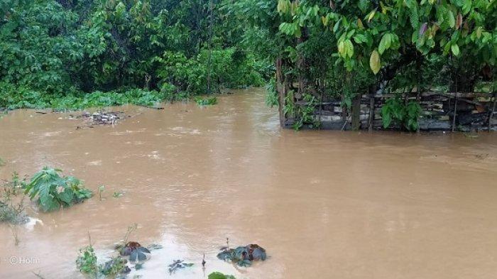 Detik-detik Warga Bombana Terseret Arus Sungai, Sempat Menjerit Terbentur Talud, Nekat Menyebrang