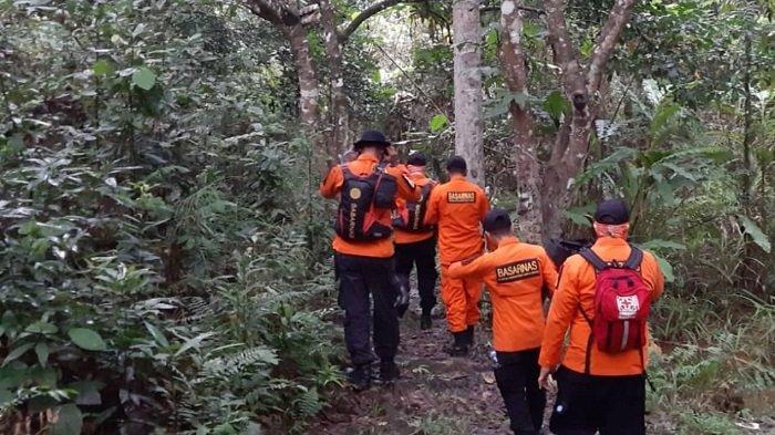 Hari Kedua Pencarian, Nenek 60 Tahun Hilang di Hutan Konawe Belum Ditemukan Tim SAR