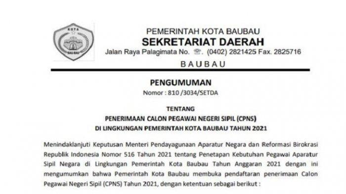 Contoh Surat Lamaran dan Pernyataan CPNS 2021 Baubau, Lengkap Rincian Formasi Jabatan