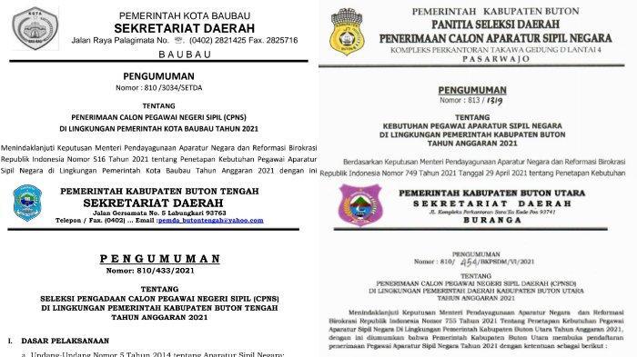 Rincian Formasi CPNS 2021 Baubau, Buton, Buton Utara, Buton Tengah, Buton Selatan, Cara Mendaftar