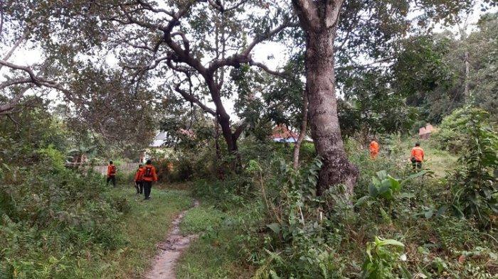 Basarnas Lanjutkan Pencarian Seorang Nenek di Bondoala Konawe yang Hilang di Hutan saat Mencari Kayu