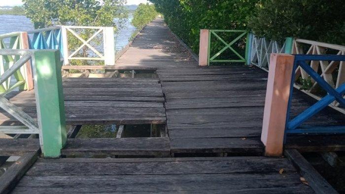Kawasan Wisata Tracking Mangrove di Teluk Kendari Kini Tak Terawat, Papan Jebol, Penuh Sampah