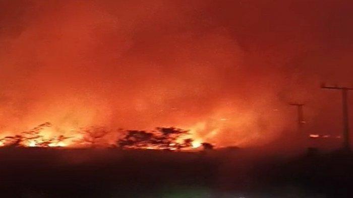 Kebakaran di Wisata Puncak Tomia Wakatobi, Kobaran Api Nyaris Merembet ke Pemukiman Warga